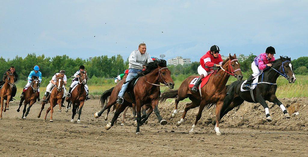 ветеранов конного спорта и