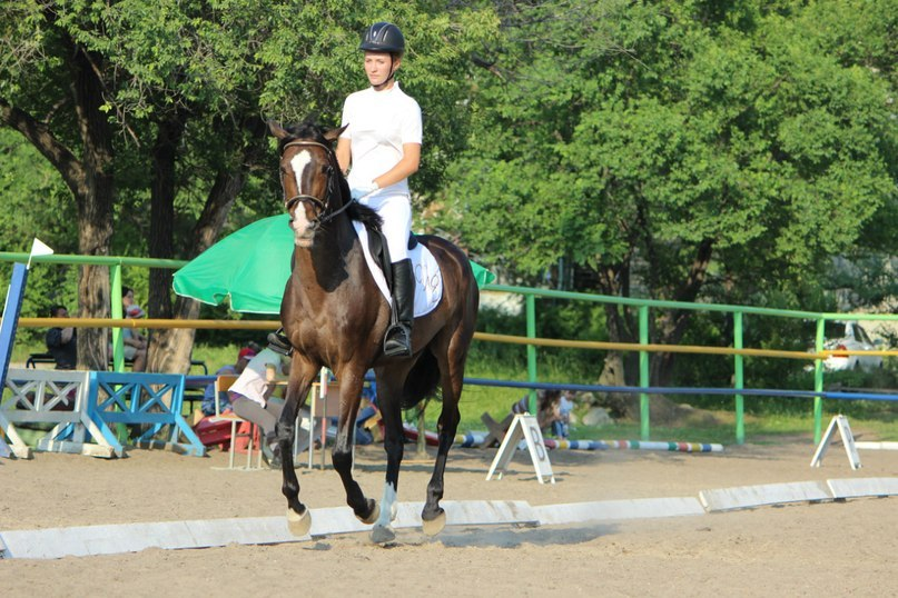 езде и адаптивному конному